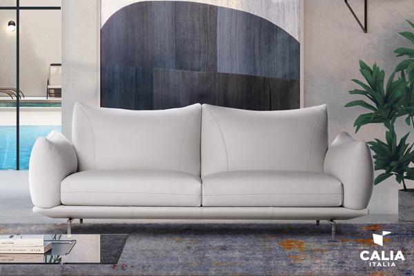 manutenzione del divano cover WEB